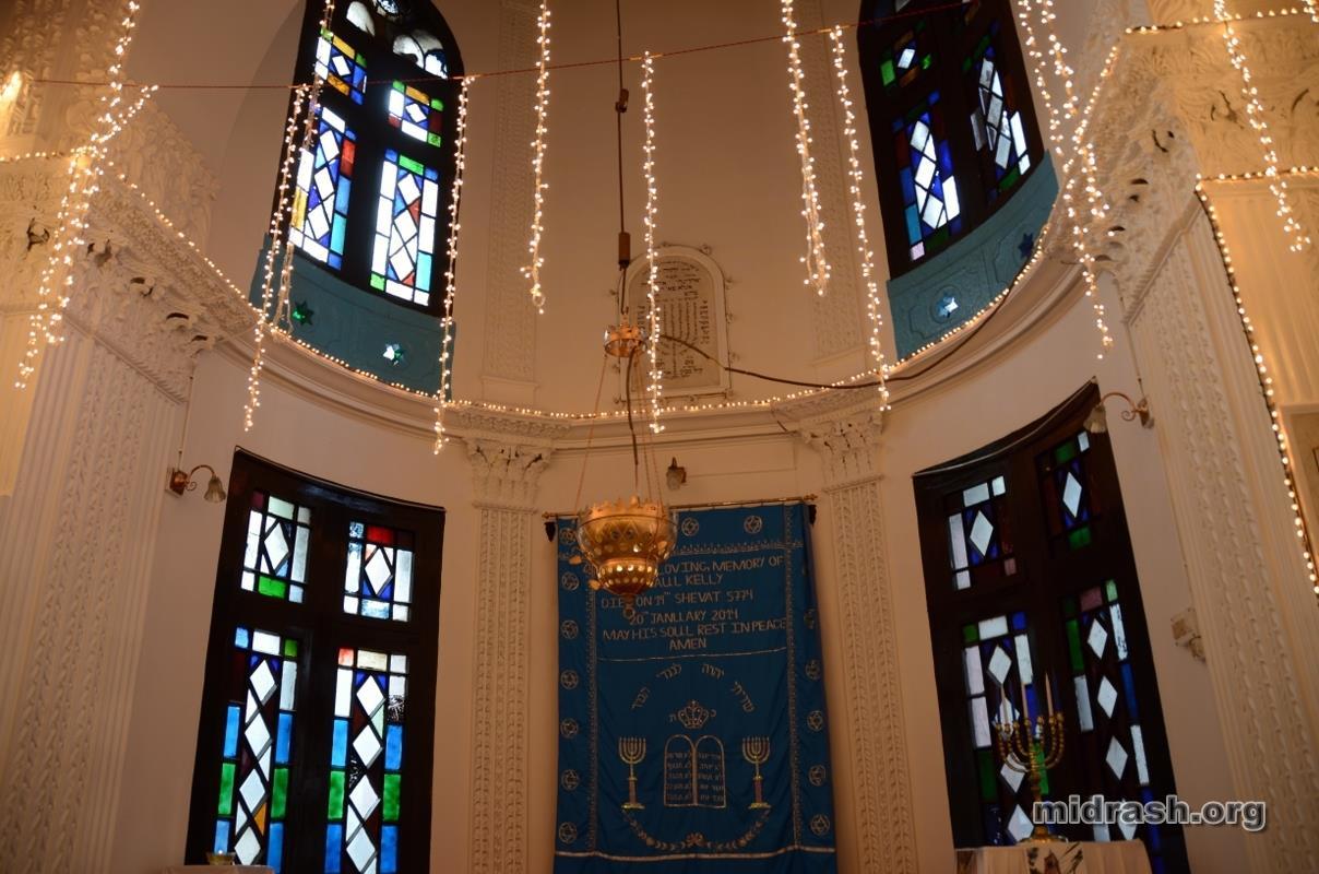 midrash-org-DSC_0421